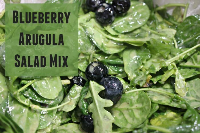 Blueberry Arugula Salad Mix
