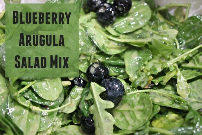 Blueberry Arugula Salad Mix